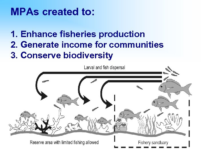 MPAs created to: 1. Enhance fisheries production 2. Generate income for communities 3. Conserve
