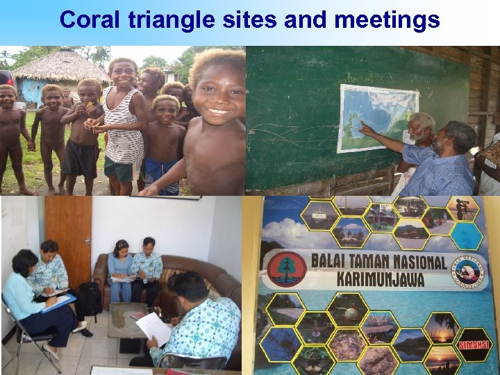 Coral triangle sites and meetings