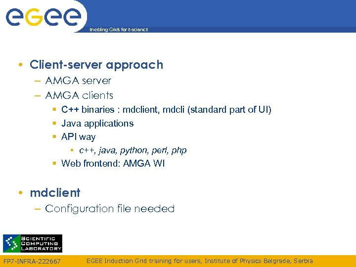 Enabling Grids for E-scienc. E • Client-server approach – AMGA server – AMGA clients