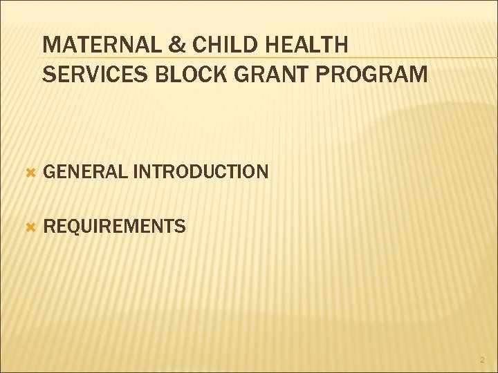 MATERNAL & CHILD HEALTH SERVICES BLOCK GRANT PROGRAM GENERAL INTRODUCTION REQUIREMENTS 2
