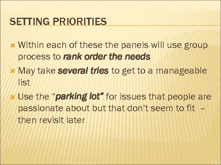 SETTING PRIORITIES Within each of these the panels will use group process to rank