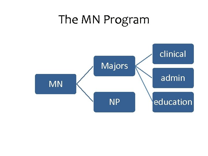 The MN Program clinical Majors admin MN NP education