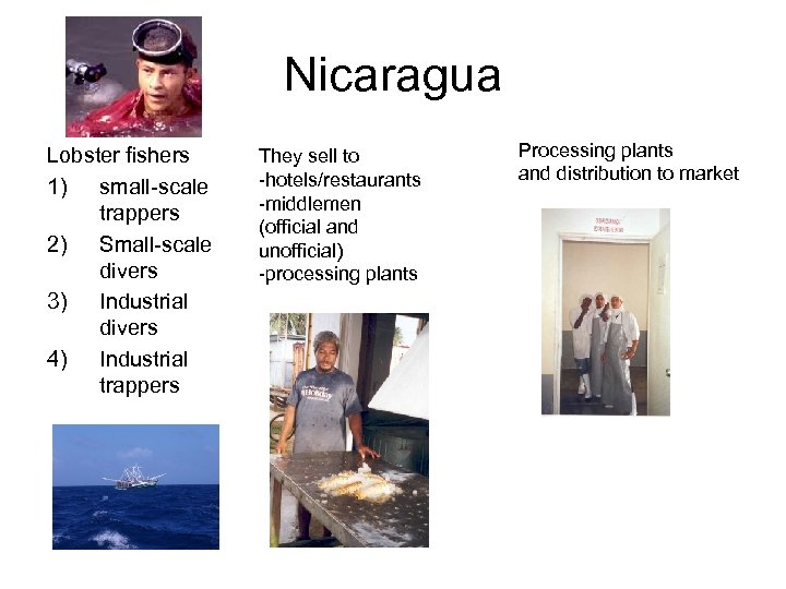 Nicaragua Lobster fishers 1) small-scale trappers 2) Small-scale divers 3) Industrial divers 4) Industrial