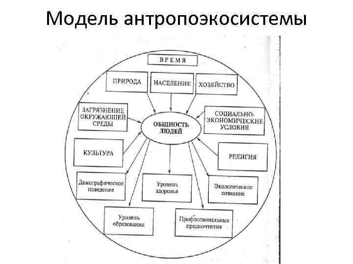 Модель антропоэкосистемы