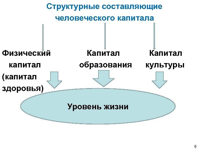 Структурные составляющие человеческого капитала Физический Капитал капитал образования культуры (капитал здоровья) Уровень жизни 6