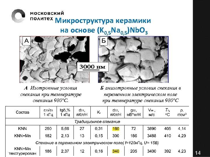 Микроструктура керамики на основе (K 0, 5 Na 0, 5)Nb. O 3 А Изотропные