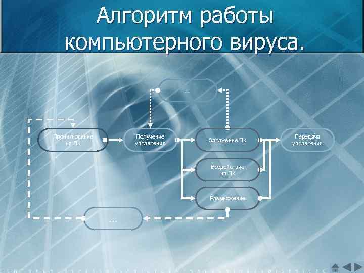 Алгоритм работы компьютерного вируса. … Проникновение на ПК Получение управления Заражение ПК Воздействие на
