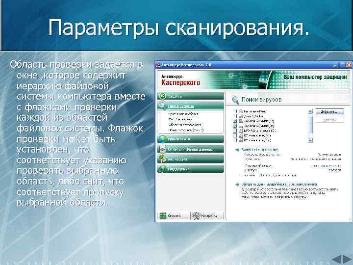 Параметры сканирования. Область проверки задаётся в окне , которое содержит иерархию файловой системы компьютера