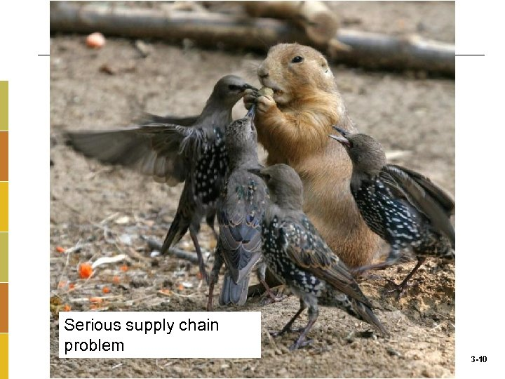 Serious supply chain problem 3 -10