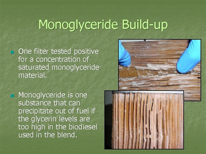 Monoglyceride Build-up n n One filter tested positive for a concentration of saturated monoglyceride