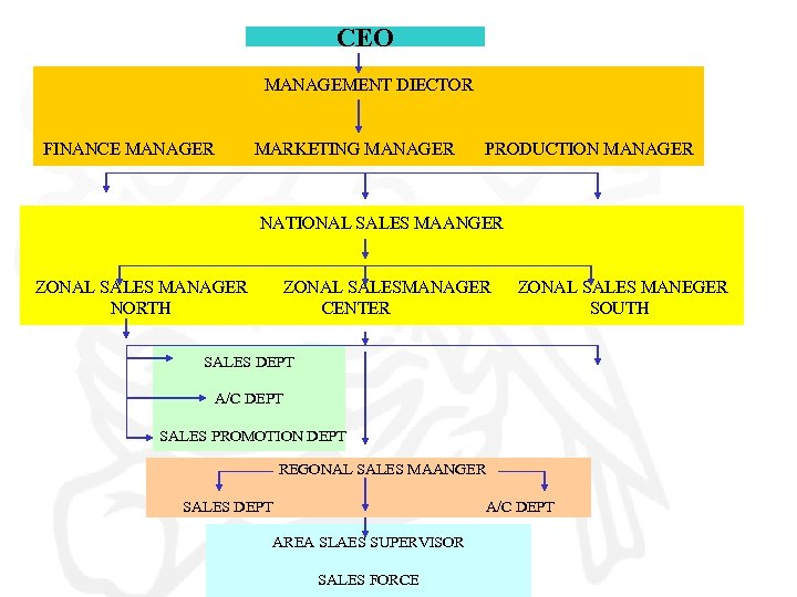 CEO MANAGEMENT DIECTOR FINANCE MANAGER MARKETING MANAGER PRODUCTION MANAGER NATIONAL SALES MAANGER ZONAL SALES