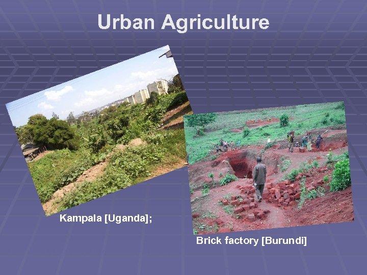 Urban Agriculture Kampala [Uganda]; Brick factory [Burundi]