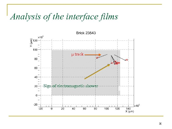 Analysis of the interface films μ track Sign of electromagnetic shower 36