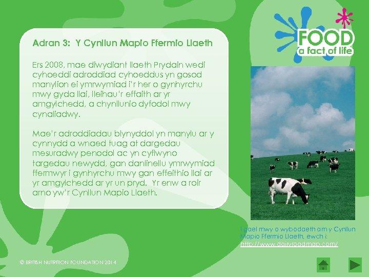 Adran 3: Y Cynllun Mapio Ffermio Llaeth Ers 2008, mae diwydiant llaeth Prydain wedi