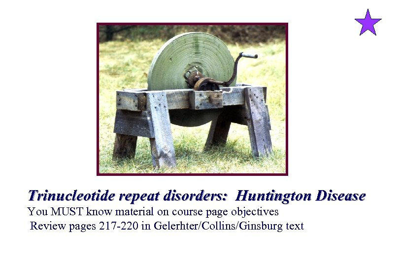 Trinucleotide repeat disorders: Huntington Disease You MUST know material on course page objectives Review