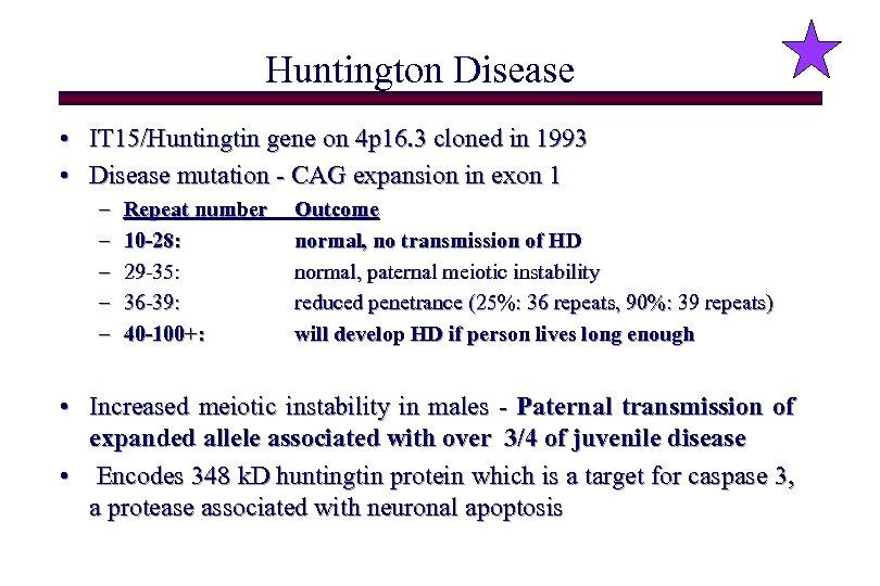 Huntington Disease • IT 15/Huntingtin gene on 4 p 16. 3 cloned in 1993