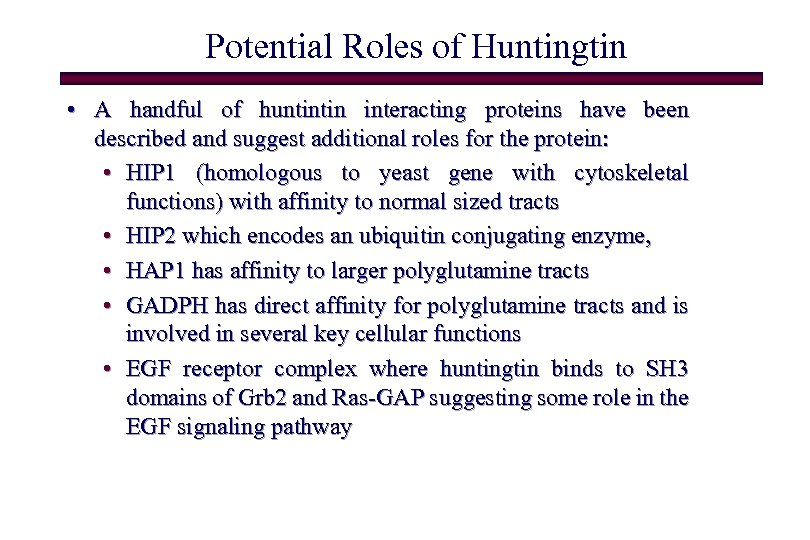 Potential Roles of Huntingtin • A handful of huntintin interacting proteins have been described