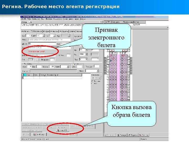 Регина. Рабочее место агента регистрации Признак электронного билета Кнопка вызова образа билета