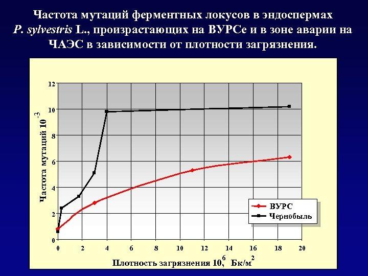 Частота мутаций ферментных локусов в эндоспермах P. sylvestris L. , произрастающих на ВУРСе и