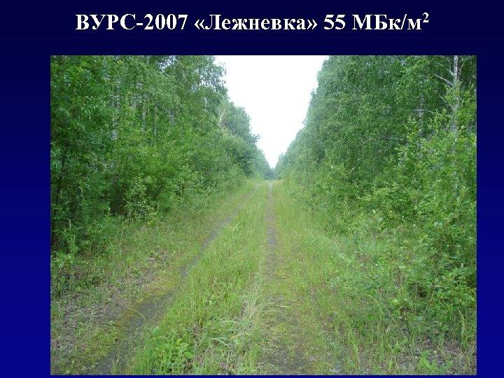 ВУРС-2007 «Лежневка» 55 МБк/м 2