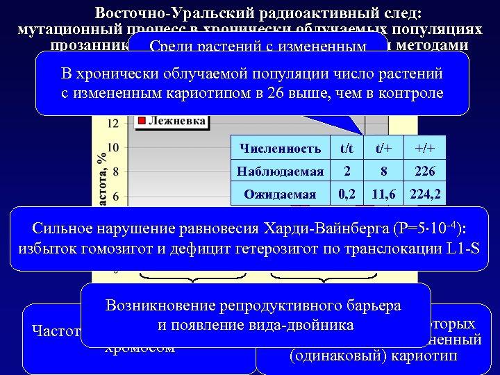 Восточно-Уральский радиоактивный след: мутационный процесс в хронически облучаемых популяциях прозанника, выявлемый цитогенетическими методами Среди