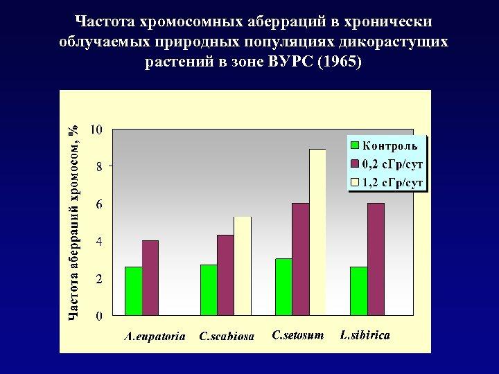 Частота хромосомных аберраций в хронически облучаемых природных популяциях дикорастущих растений в зоне ВУРС (1965)