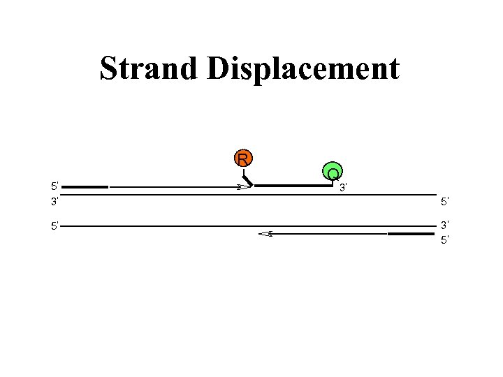 Strand Displacement R 5 3 5 Q 3 5