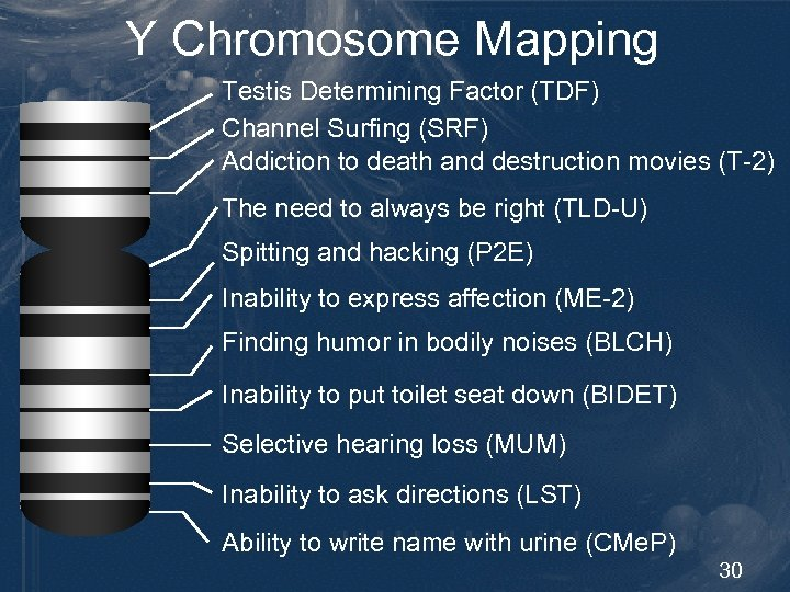 Y Chromosome Mapping Testis Determining Factor (TDF) Channel Surfing (SRF) Addiction to death and