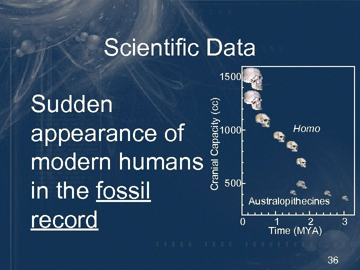 Scientific Data 1500 Cranial Capacity (cc) Sudden appearance of modern humans in the fossil