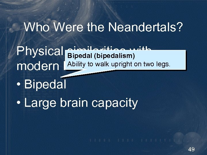 Who Were the Neandertals? Physical similarities with Bipedal (bipedalism) Ability to walk upright on