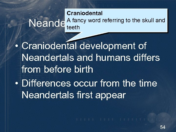 Craniodental A fancy word referring to the skull and teeth Neandertal Development • Craniodental