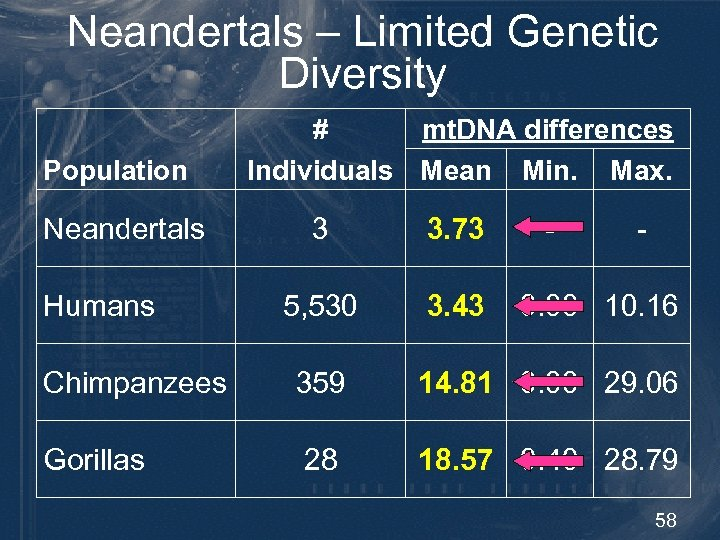 Neandertals – Limited Genetic Diversity Population Neandertals Humans mt. DNA differences # Individuals Mean