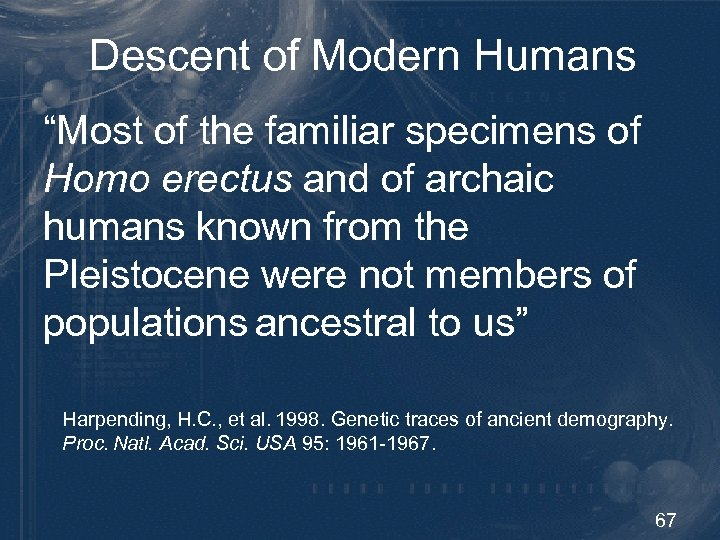 """Descent of Modern Humans """"Most of the familiar specimens of Homo erectus and of"""