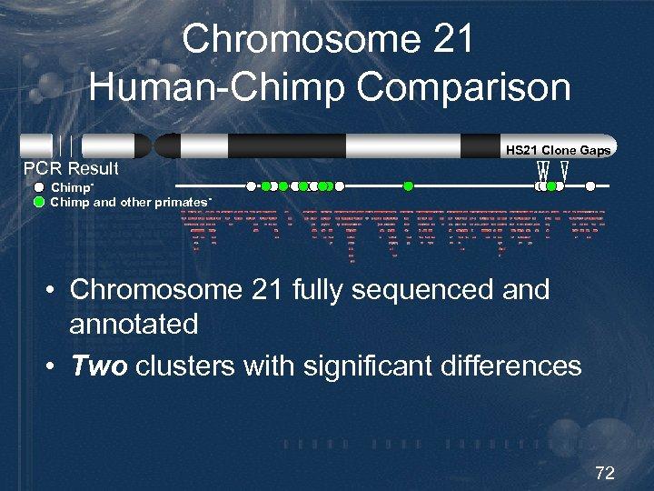 Chromosome 21 Human-Chimp Comparison HS 21 Clone Gaps PCR Result Chimp and other primates-