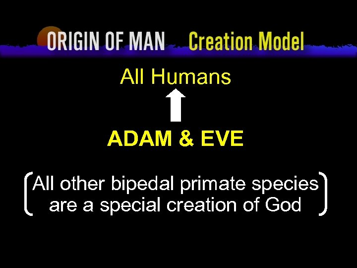 Origin of Man Creation Model All Humans ADAM & EVE All other bipedal primate