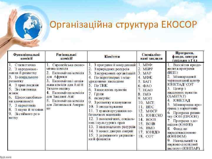 Організаційна структура ЕКОСОР