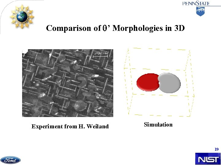 Comparison of ' Morphologies in 3 D Experiment from H. Weiland Simulation 19