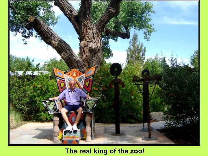 The real king of the zoo!
