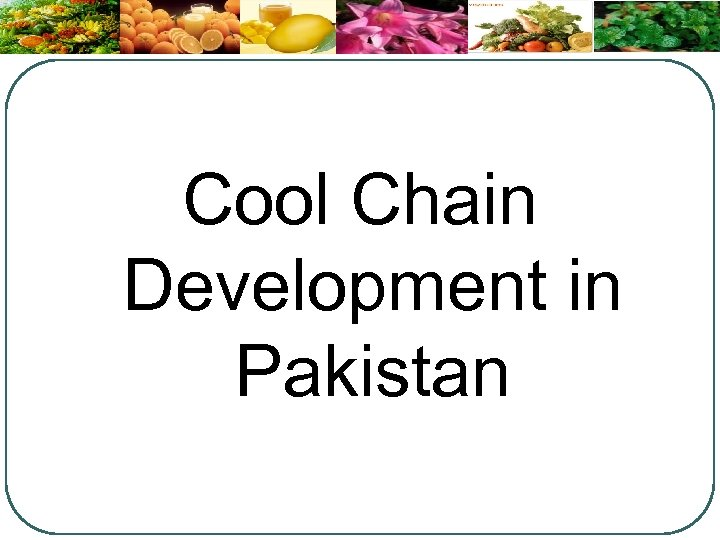 Cool Chain Development in Pakistan