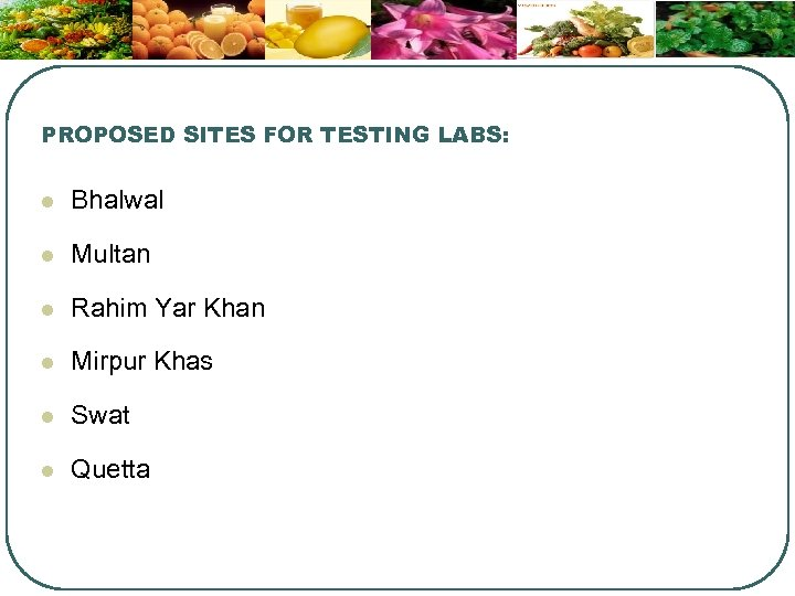 PROPOSED SITES FOR TESTING LABS: l Bhalwal l Multan l Rahim Yar Khan l