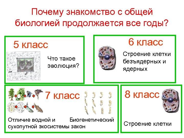 Почему знакомство с общей биологией продолжается все годы? 5 класс Что такое эволюция? 7