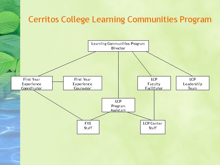 Cerritos College Learning Communities Program Director First Year Experience Coordinator First Year Experience Counselor