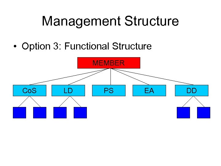 Management Structure • Option 3: Functional Structure MEMBER Co. S LD PS EA DD