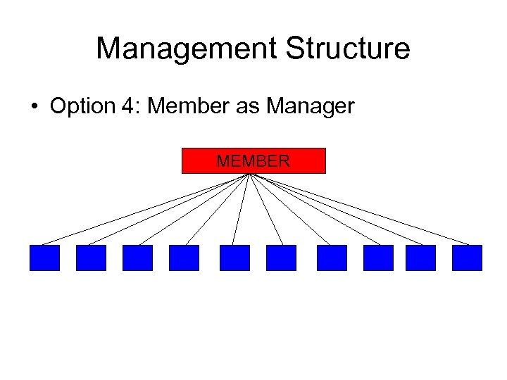 Management Structure • Option 4: Member as Manager MEMBER