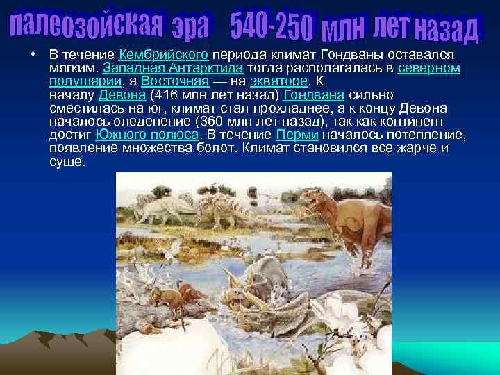 • В течение Кембрийского периода климат Гондваны оставался мягким. Западная Антарктида тогда располагалась