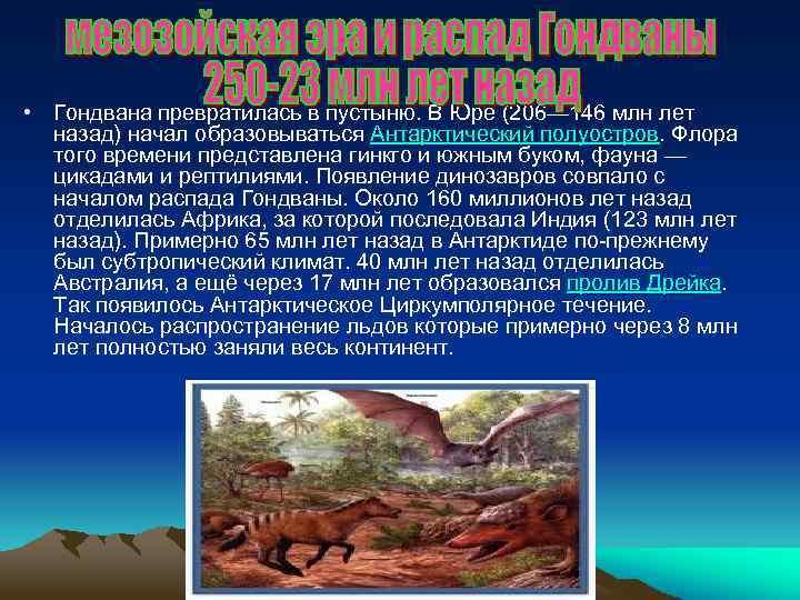 • Гондвана превратилась в пустыню. В Юре (206— 146 млн лет назад) начал