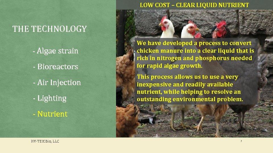 LOW COST – CLEAR LIQUID NUTRIENT THE TECHNOLOGY - Algae strain - Bioreactors -