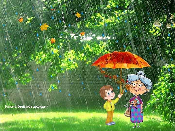 Какие бывают дожди?