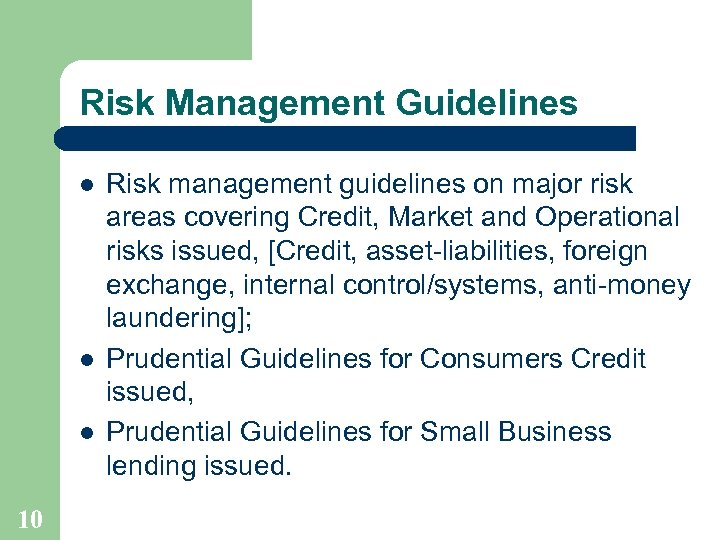Risk Management Guidelines l l l 10 Risk management guidelines on major risk areas