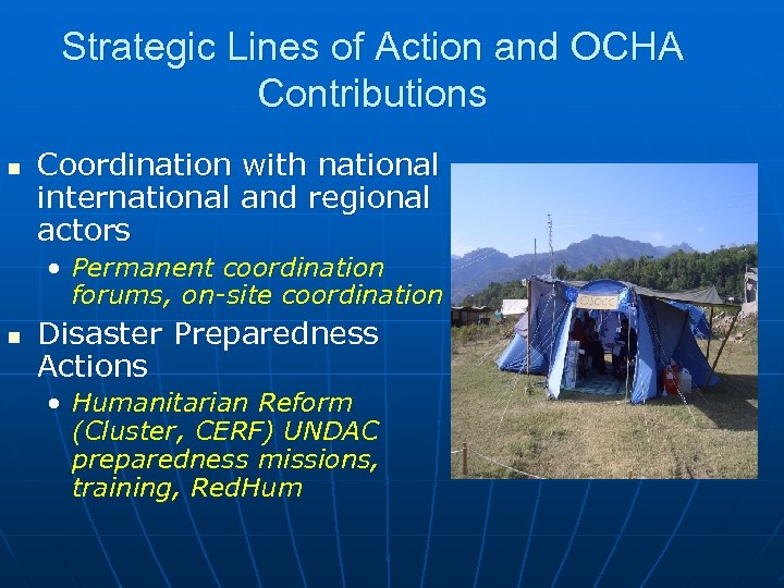 Strategic Lines of Action and OCHA Contributions n Coordination with national international and regional